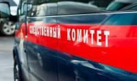 В Красноярске 14-летняя школьница скончалась от поддельного виски