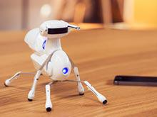 Китайский стартап собирает средства на производство обучающего робота-муравья (ВИДЕО)