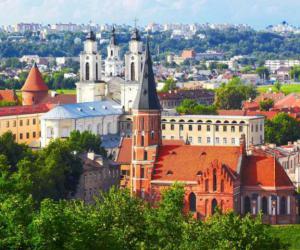 В литовском МИД удивлены: более 40 % уехавших граждан не собираются возвращаться на родину